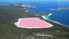 Todos quieren saber por qué este lago tiene un impresionante color rosa chicle. Aquí te lo explicamos