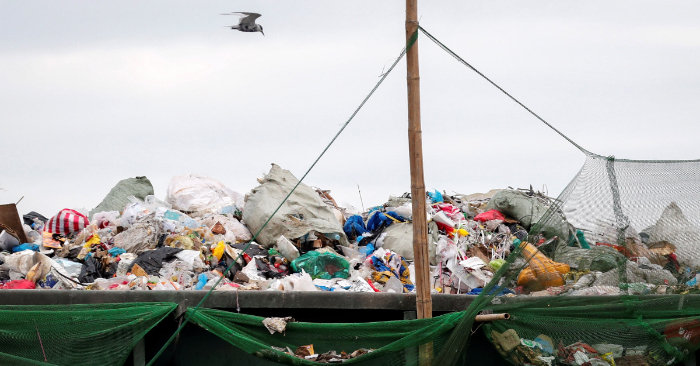 Un ave sobrevuela un contenedor de basura en la Bahía de Manila en Filipinas. EFE/ Archivo