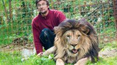 Un león mató a su dueño luego de tenerlo encerrado por 3 años en su casa
