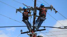 Suspenden a operario de compañía telefónica por usar sus equipos para rescatar a un gatito de un poste