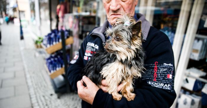 Foto ilustrativa de Carsten Koall/Getty Images