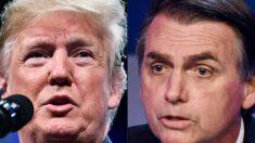 Trump dará la bienvenida al presidente Bolsonaro de Brasil en la Casa Blanca