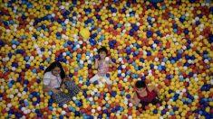 Vómitos, heces, orina y muchas bacterias: esto es lo que hallaron científicos en los parques de bolas