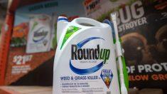 Herbicida de Monsanto fue el