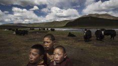 La Revolución Cultural de China pronto podría reaparecer en el Tíbet