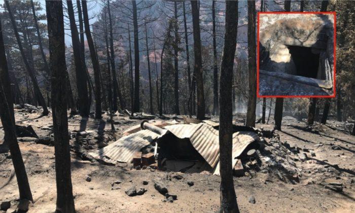 Un incendio forestal en Utah reveló una red ilegal de cabañas y búnkeres en un radio de dos millas en terrenos públicos llenos de armas, granadas y alimentos. (Oficina del Sheriff del Condado de Iron)
