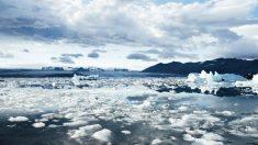 """Abuela posa para unas fotos en un """"trono de hielo"""" cuando es arrastrada por el mar"""