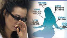 Cirujano remueve por la fuerza 2000 córneas, su esposa recuerda la pesadilla del 'mal karma'