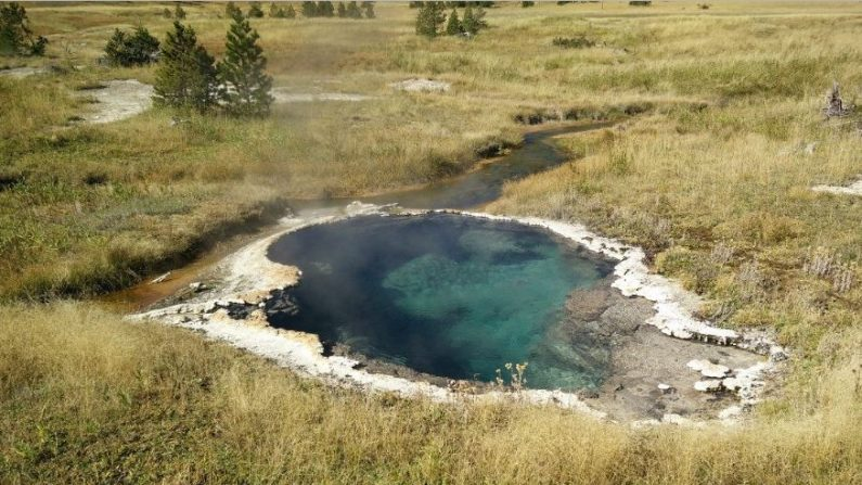 Esta piscina de agua termal limpia en Yellowstone contiene bacterias que comen y respiran electricidad. (Universidad estatal de Washington)