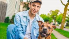 Un perrito vagabundo ayudó a un ciclista herido y varado en una montaña, ¡ahora es todo un héroe!