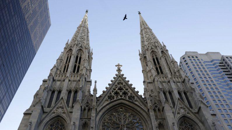 Un ave vuela sobre la Catedral de San Patricio. (EFE/Archivo)