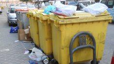 Arrestan a la mujer que arrojó 7 cachorros a la basura, en su casa tenía otros 30 animales