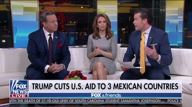 (Captura de pantalla de Fox News)