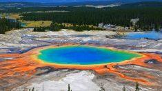 Emerge una nueva zona de actividad térmica en Yellowstone y tiene el tamaño de 4 campos de fútbol