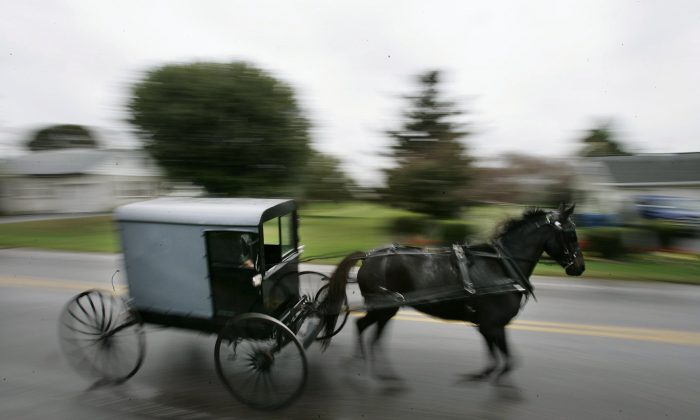 Foto de archivo de un caballo tirando de un carruaje amish (Chris Hondros/Getty Images)