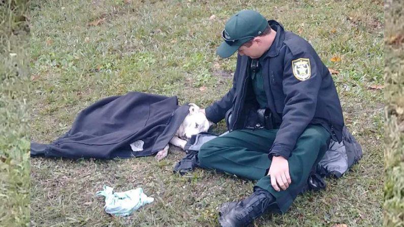 Imagen Ilustrativa. (Crédito: Osceola County Sheriff's Office)