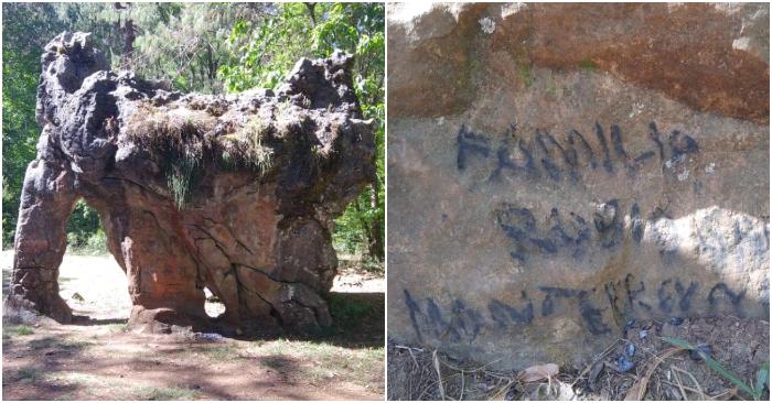 """Foto combinada de la """"Piedra del Elefante"""" en la biosfera El Cielo, en Tamaulipas. Cortesía del centro interpretativo ecológico (CIE)."""