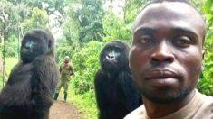 Guardabosque del Congo describió cómo tomó la selfie con los 2 gorilas que se hizo viral