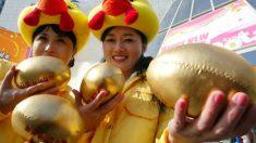 Una mujer podría ganar 350.000 dólares por una gallina infértil