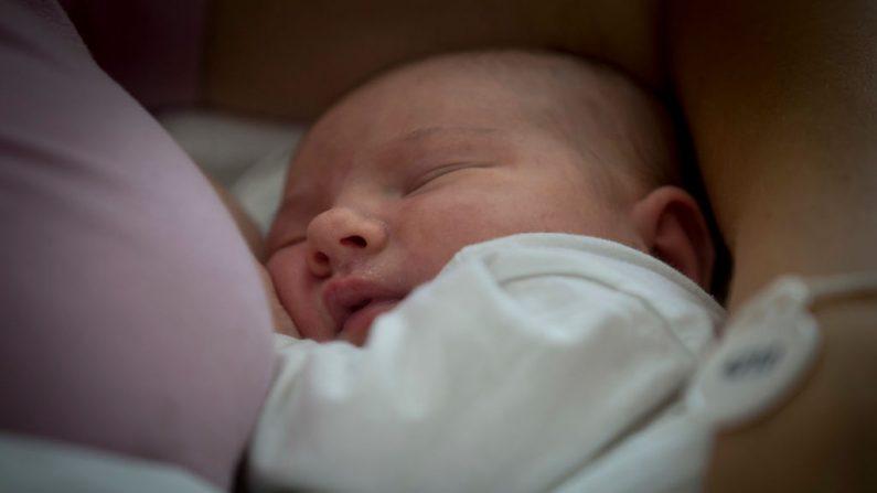 """Imagen ilustrativa de un bebé luego de amamantar en la Clínica de Obstetricia y Ginecología """"Frente Narodni"""" en Belgrado el 31 de julio de 2018.(OLIVER BUNIC/AFP/Getty Images)"""