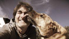 3 amigos tristes por 5 perros callejeros viajan todo un día para encontrarles hogar. Conoce su odisea