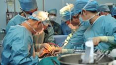 Llamadas telefónicas incriminatorias: Médicos admiten sustraer órganos a practicantes vivos de Falun Dafa en China