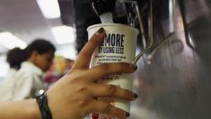 Clientes de McDonald's se quejan de encontrar lombrices de tierra en su bebidas