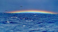 Extraño objeto sumergido en el Triángulo de las Bermudas podría ser evidencia de vida extraterrestre