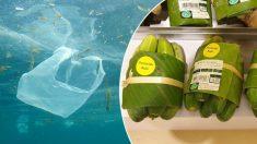 Supermercado tailandés experimenta con hojas de plátano para reemplazar envases de plástico