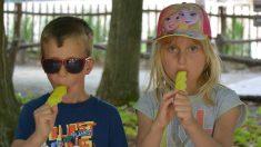 Mujer se convierte en la 'mamá más mala' cuando los niños ingratos no dieron gracias por el helado