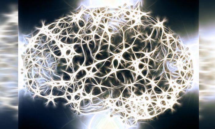 Ilustración gráfica de los enlaces neuronales del cerebro. (Geralt/Pixabay)