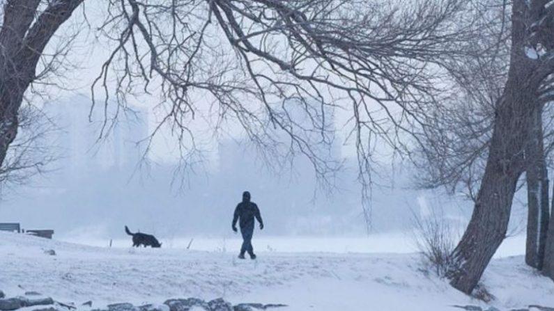 Un hombre pasea a un perro en un parque cubierto de nieve en Kingston, Ontario, el 30 de enero de 2019. (Foto de LARS HAGBERG / AFP / Getty Images)