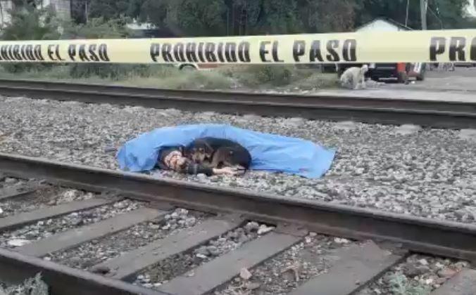 Perrito cuida el cuerpo sin vida de un hombre arrollado por un tren en Monterelos, México, el 4 de abril de 2019. (Captura de vídeo)