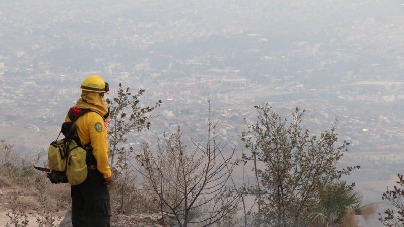 Grupos de bomberos y de Protección Civil, conjuntamente con policías estatales, intentan sofocar este lunes un incendio forestal de grandes magnitudes que se mantiene en la zona de El Calvario, en el municipio de Chilpancingo, capital del sureño estado de Guerrero (México). EFE