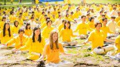 Falun Dafa: meditación serena y popular