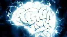 Claridad mental cerca de la muerte sugiere que la mente existe separada del cerebro