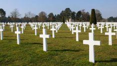 Unos gemelos fueron asesinados en la Segunda Guerra Mundial, 74 años después una estudiante los reúne