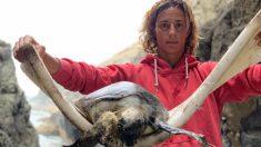 Imágenes de una tortuga muerta llena de plástico son compartidas por famosas windsurfistas españolas