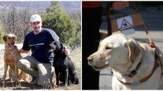 Corredor ciego completa la media maratón con la ayuda de un equipo de perros guía entrenados por él