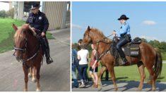 Imagen viral desgarradora: Oficial consuela a su caballo herido en los últimos momentos de su vida