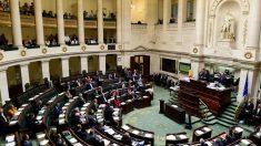 Bélgica aprueba ley que penaliza el turismo médico para trasplantes de órganos