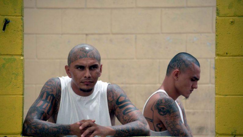Miembros de la banda MS-13 permanecen en la prisión de Chalatenango, 84 km al norte de San Salvador, el 29 de marzo de 2019. (MARVIN RECINOS/AFP/Getty Images)