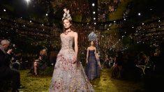 Gato se roba el show en desfile de Christian Dior y orina sobre una mujer del público