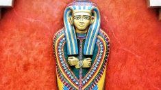 ¡Hallazgo de 8 sarcófagos egipcios con momias bien conservadas y desenterrados al sur de El Cairo!