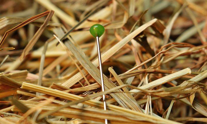 Foto ilustrativa de un alfiler en el suelo. (Pixabay/CC0)