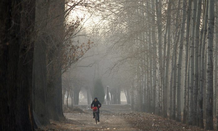 Un ciclista en China. (Frederic J. Brown/AFP/Getty Images)