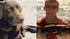 Caimán mata a un perro de asistencia, su dueño angustiado se suicida al día siguiente
