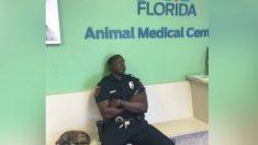 Policía agotado rescata a un cachorro mientras está de servicio, la foto se vuelve viral