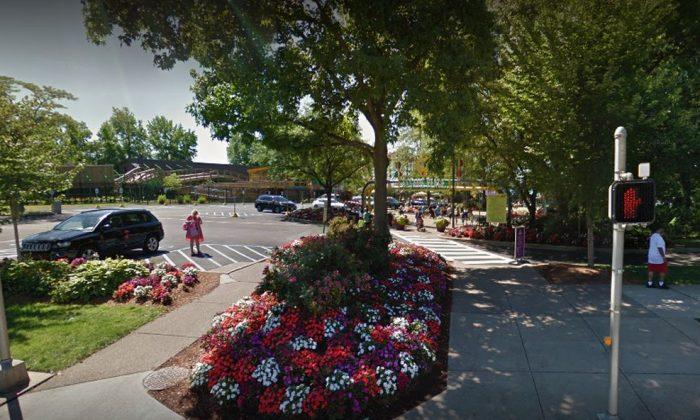 Plaza Sésamo. (Google Street View)