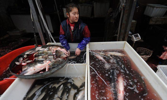 Una vendedora china de pescados en un mercado en Hefei, provincia de Anhui, el 23 de diciembre de 2010. (STR/AFP/Getty Images)
